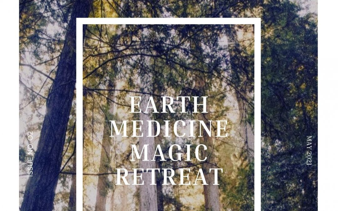 Forest Bathing and Why The World Needs You To Prioritize Your Healing
